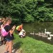 Vycházka k rybníkům
